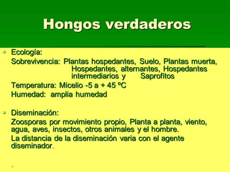 Hongos verdaderos Ecología: Ecología: Sobrevivencia: Plantas hospedantes, Suelo,Plantas muerta, Hospedantes, alternantes, Hospedantes intermediarios y