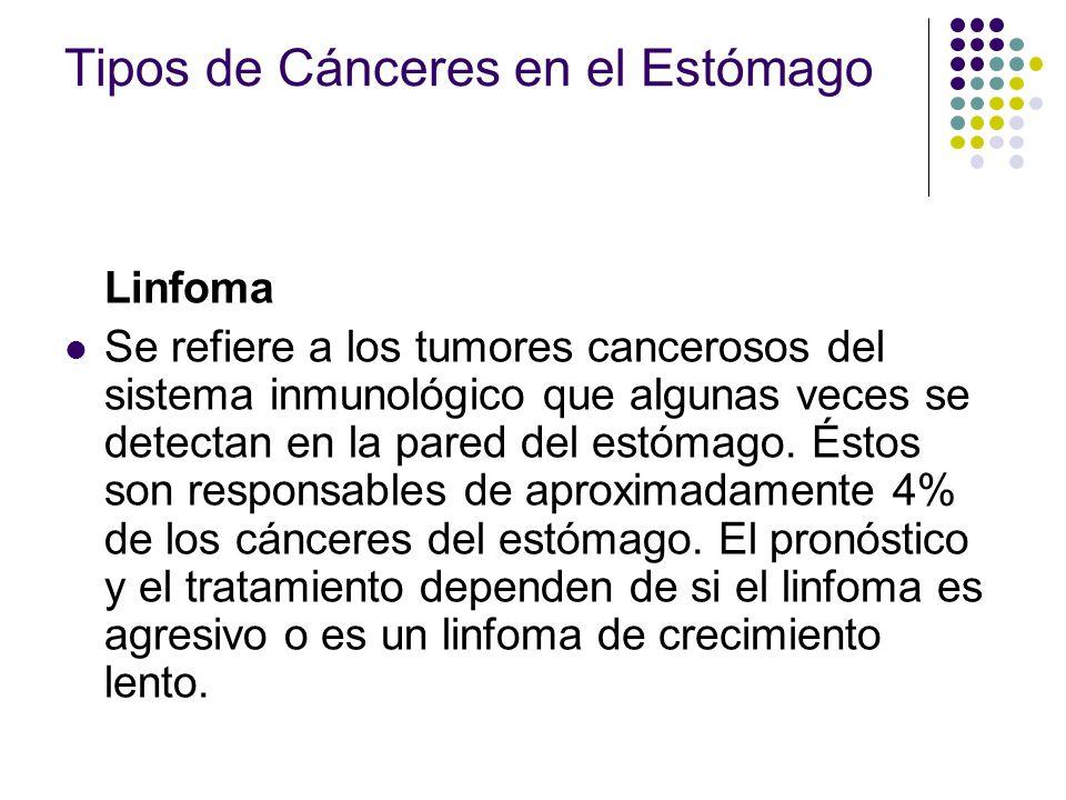 Tipos de Cánceres en el Estómago Linfoma Se refiere a los tumores cancerosos del sistema inmunológico que algunas veces se detectan en la pared del es