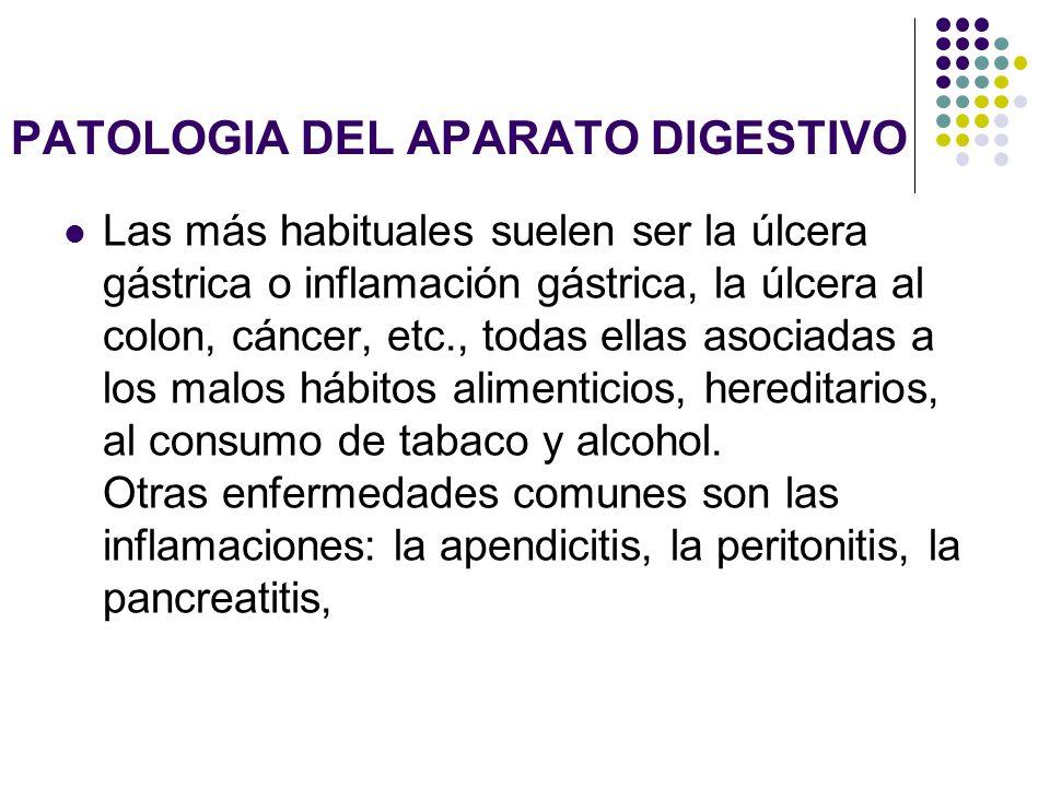 PATOLOGIA DEL APARATO DIGESTIVO Las más habituales suelen ser la úlcera gástrica o inflamación gástrica, la úlcera al colon, cáncer, etc., todas ellas