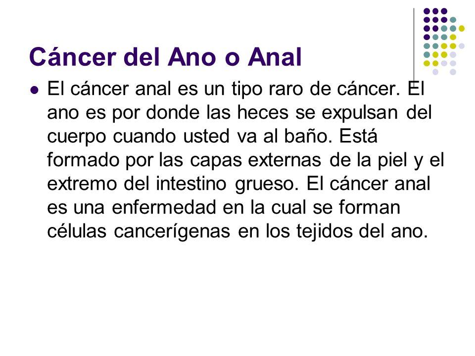 Cáncer del Ano o Anal El cáncer anal es un tipo raro de cáncer. El ano es por donde las heces se expulsan del cuerpo cuando usted va al baño. Está for
