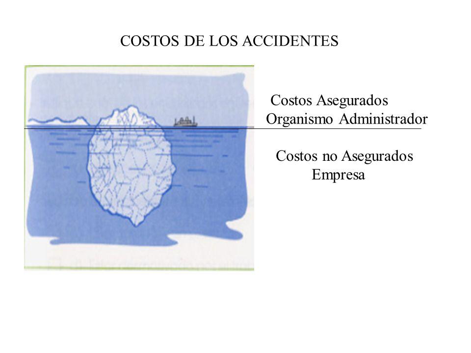Consecuencias de los Accidentes Consecuencia para la Empresa: Pagos extraordinarios Falta de ánimo en los trabajadores Sobre tiempos. Menor rendimient