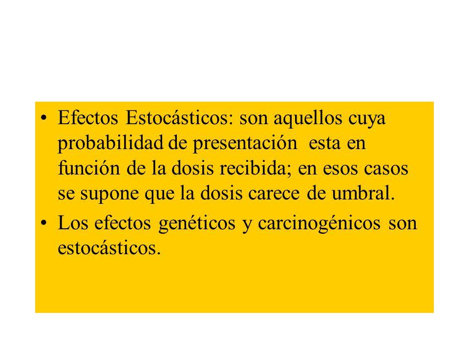 Riesgo Radiológico Características Es imperceptible para el trabajador Es acumulativo en el organismo No posee umbral (Efectos estocásticos) Es cancer