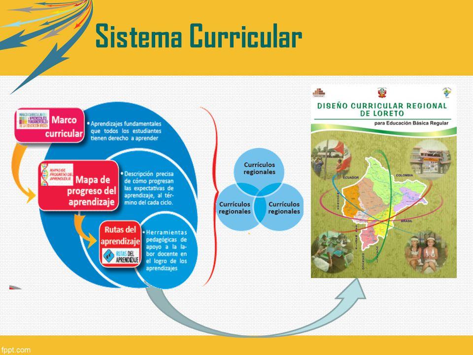 Presentan un menor número de competencias y capacidades las cuales han sido elaborados a partir del DCN y los mapas de progreso.