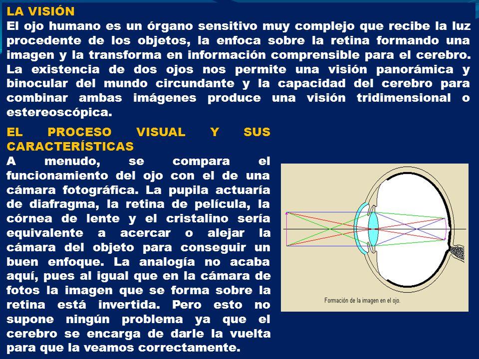 LA VISIÓN El ojo humano es un órgano sensitivo muy complejo que recibe la luz procedente de los objetos, la enfoca sobre la retina formando una imagen