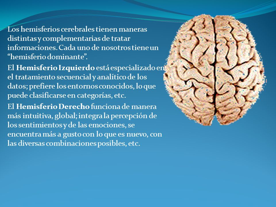 Los hemisferios cerebrales tienen maneras distintas y complementarias de tratar informaciones. Cada uno de nosotros tiene un hemisferio dominante. El