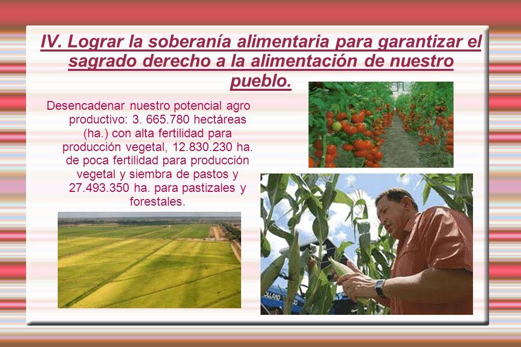 IV. Lograr la soberanía alimentaria para garantizar el sagrado derecho a la alimentación de nuestro pueblo. Desencadenar nuestro potencial agro produc