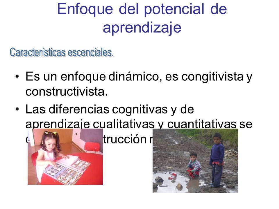 Enfoque del potencial de aprendizaje Es un enfoque dinámico, es congitivista y constructivista. Las diferencias cognitivas y de aprendizaje cualitativ