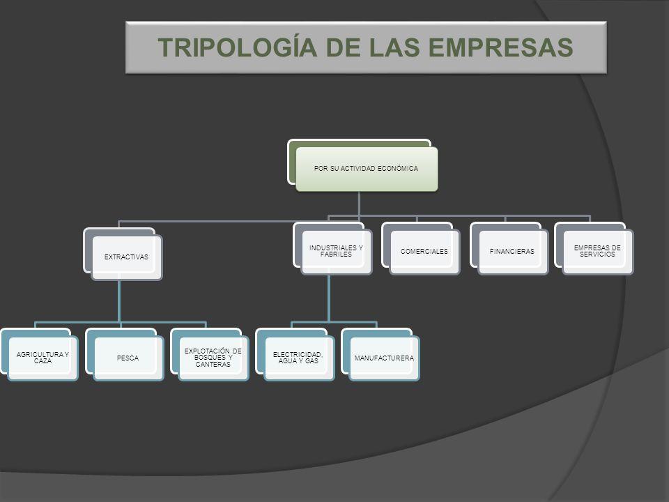 POR SU ACTIVIDAD ECONÓMICAEXTRACTIVAS AGRICULTURA Y CAZA PESCA EXPLOTACIÓN DE BOSQUES Y CANTERAS INDUSTRIALES Y FABRILES ELECTRICIDAD, AGUA Y GAS MANUFACTURERACOMERCIALESFINANCIERAS EMPRESAS DE SERVICIOS TRIPOLOGÍA DE LAS EMPRESAS