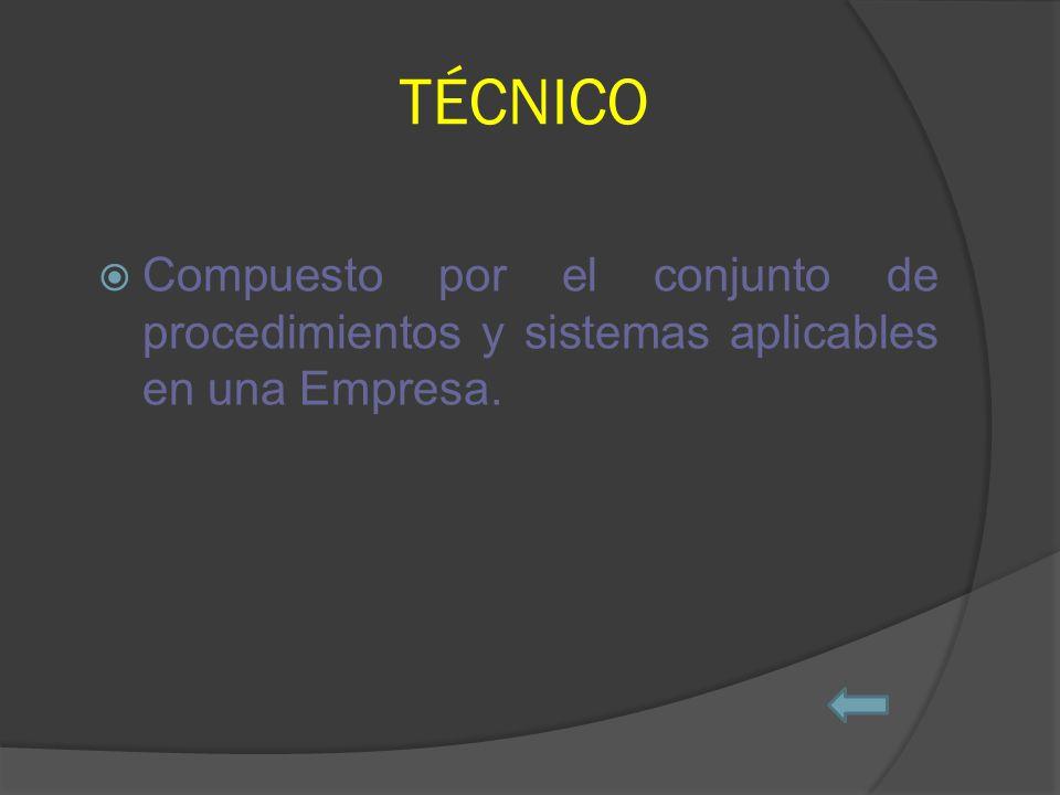 TÉCNICO Compuesto por el conjunto de procedimientos y sistemas aplicables en una Empresa.