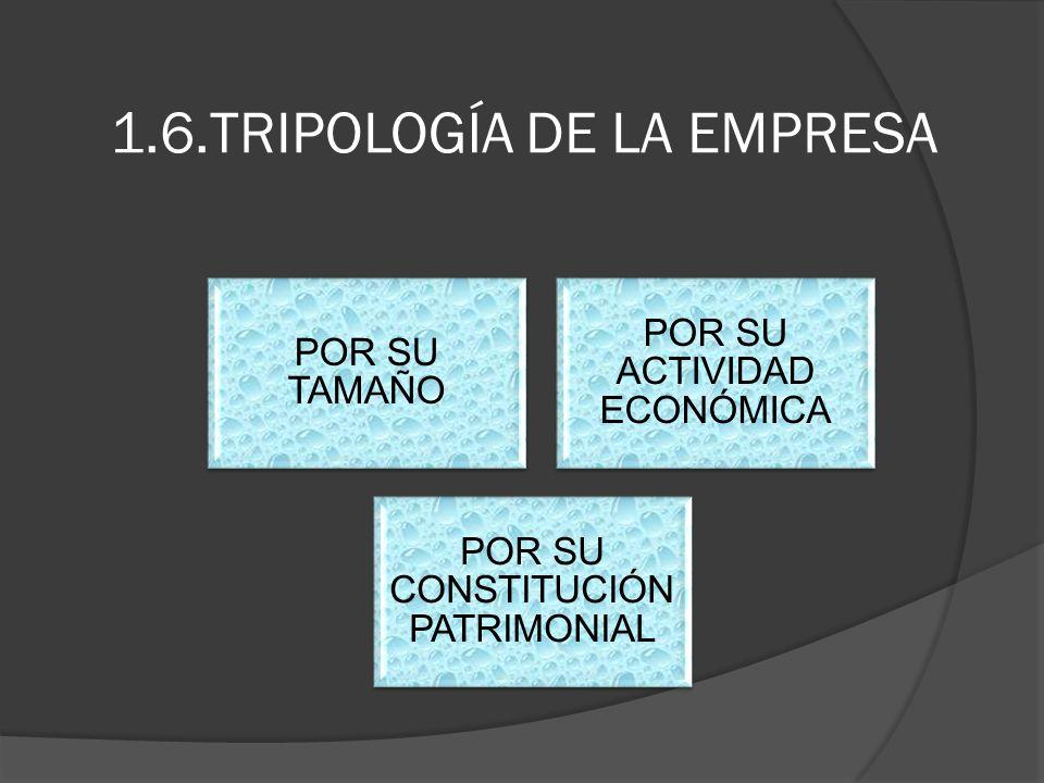 1.6.TRIPOLOGÍA DE LA EMPRESA POR SU TAMAÑO POR SU ACTIVIDAD ECONÓMICA POR SU CONSTITUCIÓN PATRIMONIAL