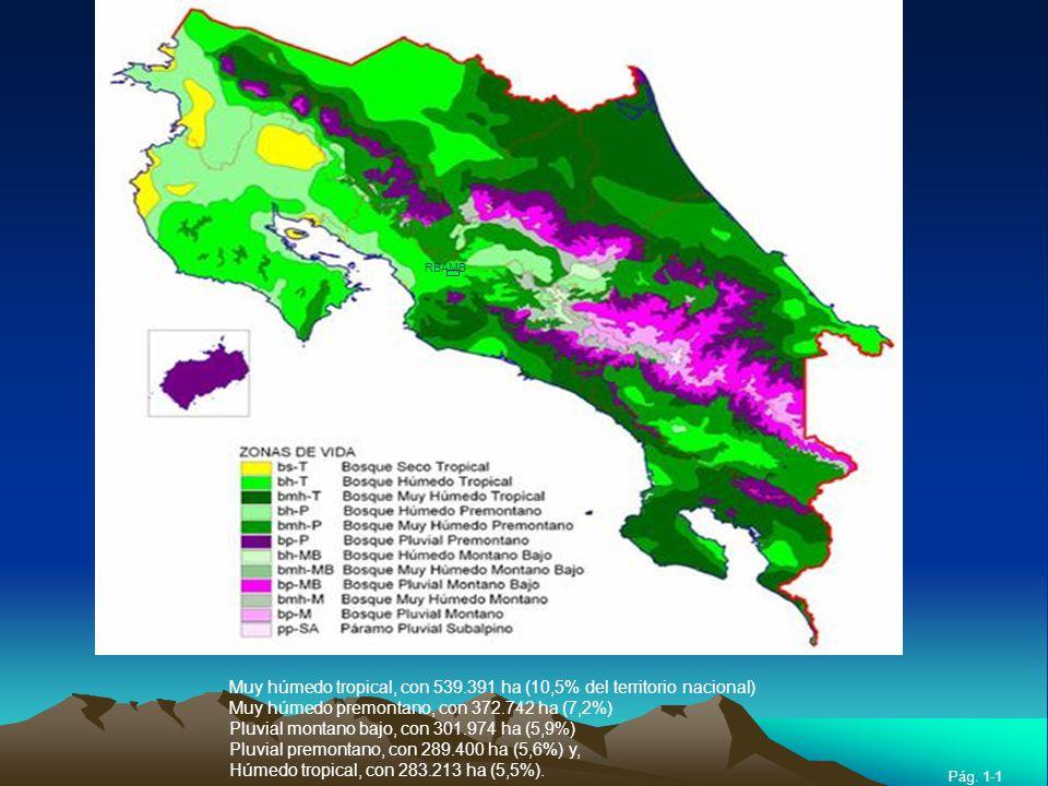 Muy húmedo tropical, con 539.391 ha (10,5% del territorio nacional) Muy húmedo premontano, con 372.742 ha (7,2%) Pluvial montano bajo, con 301.974 ha