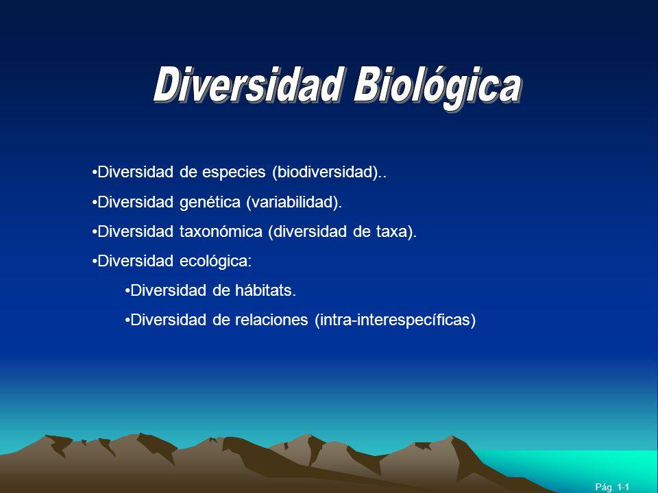RBAMB Pág. 1-1 Diversidad de especies (biodiversidad).. Diversidad genética (variabilidad). Diversidad taxonómica (diversidad de taxa). Diversidad eco