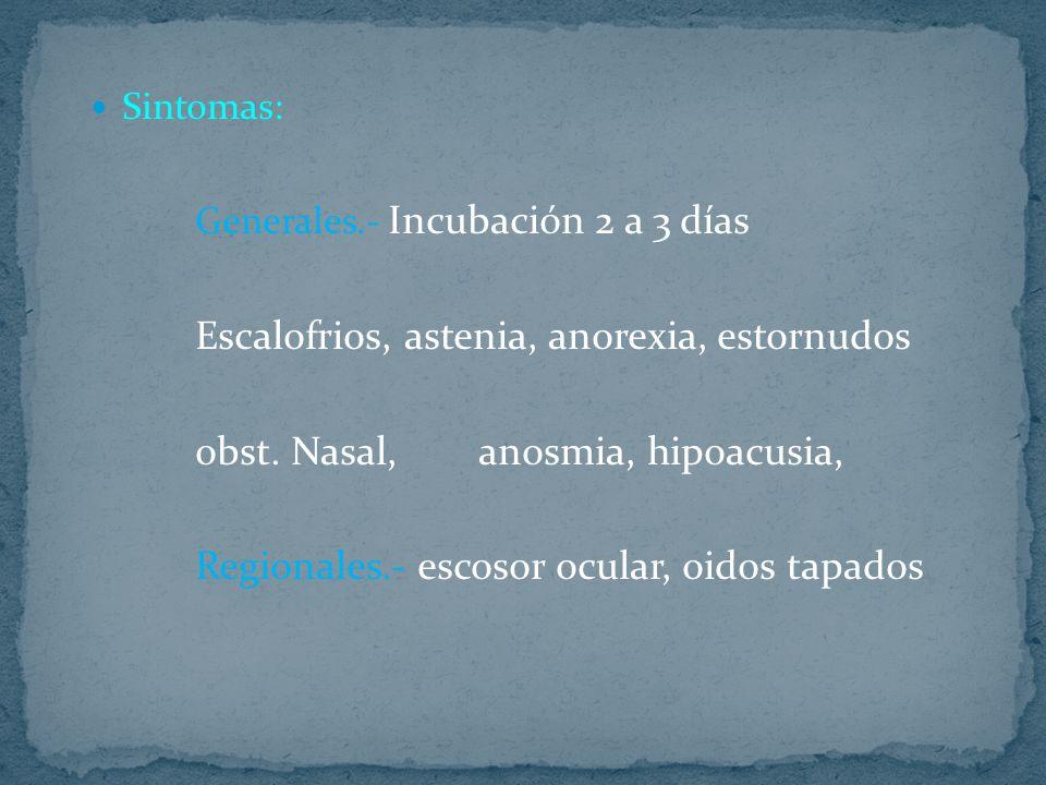 Sintomas: Generales.- Incubación 2 a 3 días Escalofrios, astenia, anorexia, estornudos obst. Nasal, anosmia, hipoacusia, Regionales.- escosor ocular,