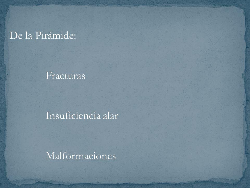 De la Pirámide: Fracturas Insuficiencia alar Malformaciones