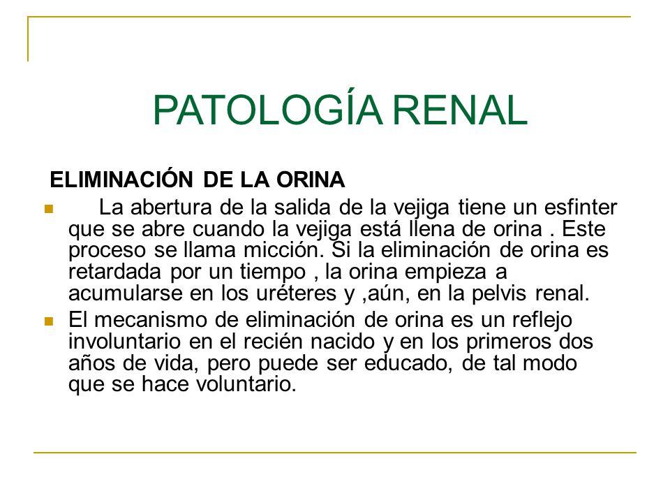 En condiciones patológicas se detectan en la orina diversas sustancias que habitualmente no se encuentran en ella: 1.