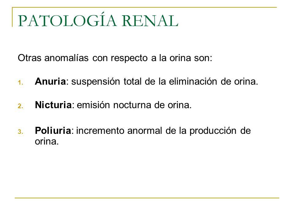 PATOLOGÍA RENAL Otras anomalías con respecto a la orina son: 1. Anuria: suspensión total de la eliminación de orina. 2. Nicturia: emisión nocturna de
