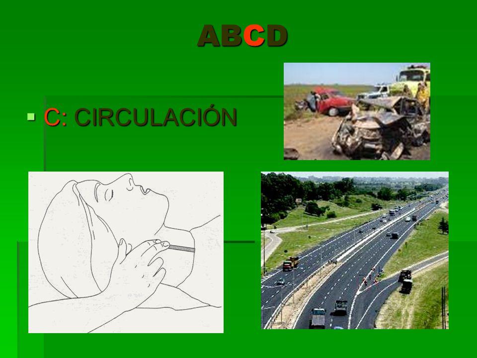 ABCD C: CIRCULACIÓN C: CIRCULACIÓN