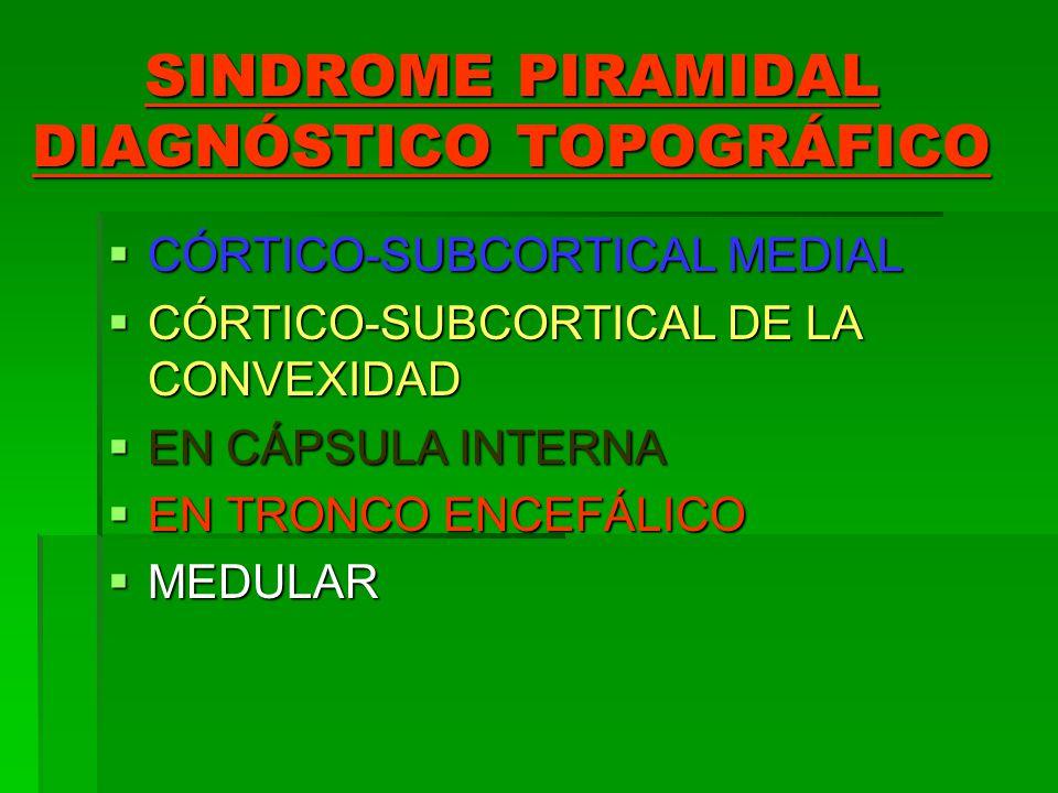SINDROME PIRAMIDAL DIAGNÓSTICO TOPOGRÁFICO CÓRTICO-SUBCORTICAL MEDIAL CÓRTICO-SUBCORTICAL MEDIAL CÓRTICO-SUBCORTICAL DE LA CONVEXIDAD CÓRTICO-SUBCORTI