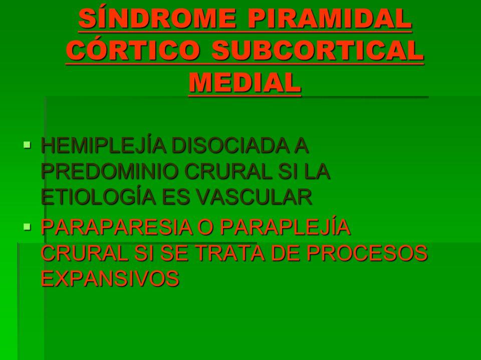 SÍNDROME PIRAMIDAL CÓRTICO SUBCORTICAL MEDIAL HEMIPLEJÍA DISOCIADA A PREDOMINIO CRURAL SI LA ETIOLOGÍA ES VASCULAR HEMIPLEJÍA DISOCIADA A PREDOMINIO C