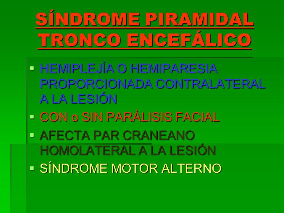 SÍNDROME PIRAMIDAL TRONCO ENCEFÁLICO HEMIPLEJÍA O HEMIPARESIA PROPORCIONADA CONTRALATERAL A LA LESIÓN HEMIPLEJÍA O HEMIPARESIA PROPORCIONADA CONTRALAT