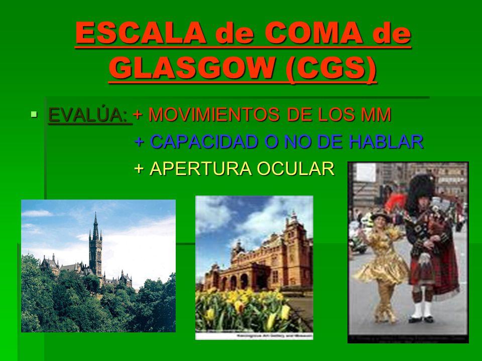 ESCALA de COMA de GLASGOW (CGS) EVALÚA: + MOVIMIENTOS DE LOS MM EVALÚA: + MOVIMIENTOS DE LOS MM + CAPACIDAD O NO DE HABLAR + CAPACIDAD O NO DE HABLAR