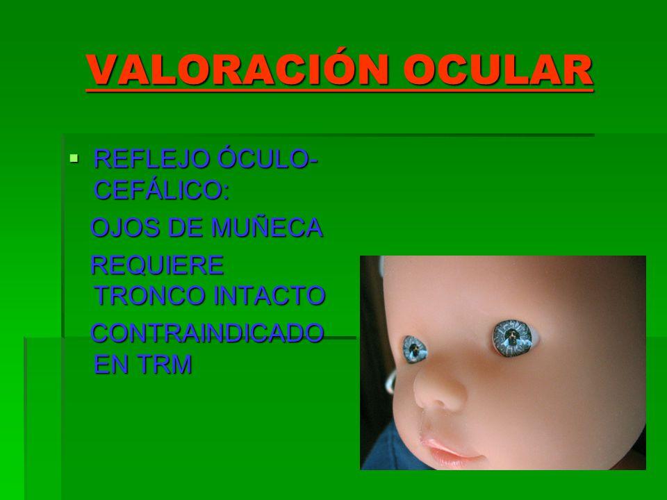 VALORACIÓN OCULAR REFLEJO ÓCULO- CEFÁLICO: REFLEJO ÓCULO- CEFÁLICO: OJOS DE MUÑECA OJOS DE MUÑECA REQUIERE TRONCO INTACTO REQUIERE TRONCO INTACTO CONT