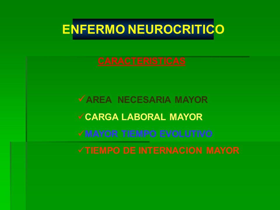 AREA NECESARIA MAYOR CARGA LABORAL MAYOR MAYOR TIEMPO EVOLUTIVO TIEMPO DE INTERNACION MAYOR CARACTERISTICAS ENFERMO NEUROCRITICO