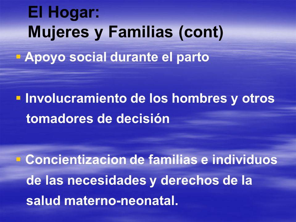 El Hogar: Mujeres y Familias Intervenciones Auto cuidado y cuidado del recién nacido Búsqueda de atención Plan de parto y emergencia