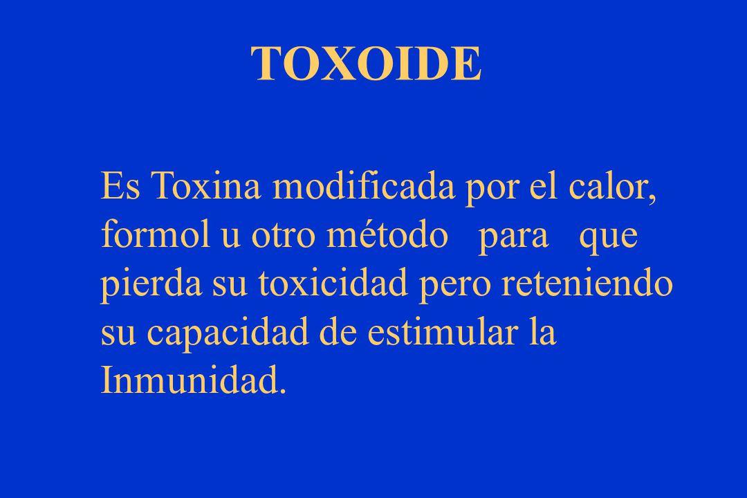 TOXOIDE Es Toxina modificada por el calor, formol u otro método para que pierda su toxicidad pero reteniendo su capacidad de estimular la Inmunidad.
