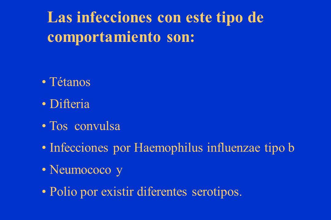 Tétanos Difteria Tos convulsa Infecciones por Haemophilus influenzae tipo b Neumococo y Polio por existir diferentes serotipos.