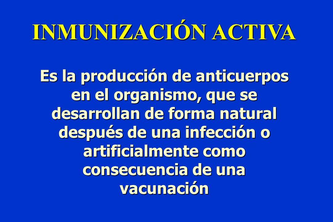 INMUNIZACIÓN ACTIVA Es la producción de anticuerpos en el organismo, que se desarrollan de forma natural después de una infección o artificialmente como consecuencia de una vacunación