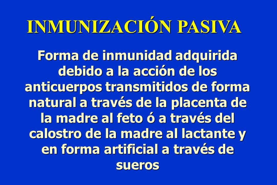 INMUNIZACIÓN PASIVA Forma de inmunidad adquirida debido a la acción de los anticuerpos transmitidos de forma natural a través de la placenta de la madre al feto ó a través del calostro de la madre al lactante y en forma artificial a través de sueros
