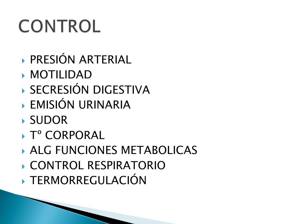 PRESIÓN ARTERIAL MOTILIDAD SECRESIÓN DIGESTIVA EMISIÓN URINARIA SUDOR Tº CORPORAL ALG FUNCIONES METABOLICAS CONTROL RESPIRATORIO TERMORREGULACIÓN