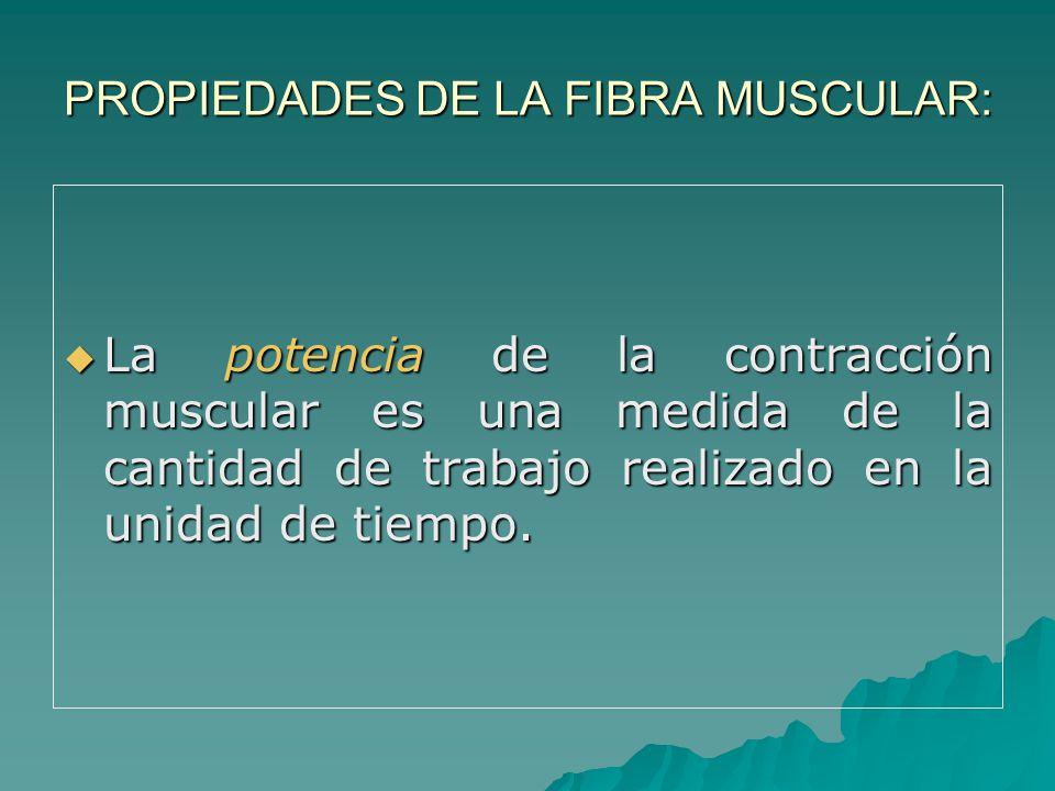 PROPIEDADES DE LA FIBRA MUSCULAR: La potencia de la contracción muscular es una medida de la cantidad de trabajo realizado en la unidad de tiempo.