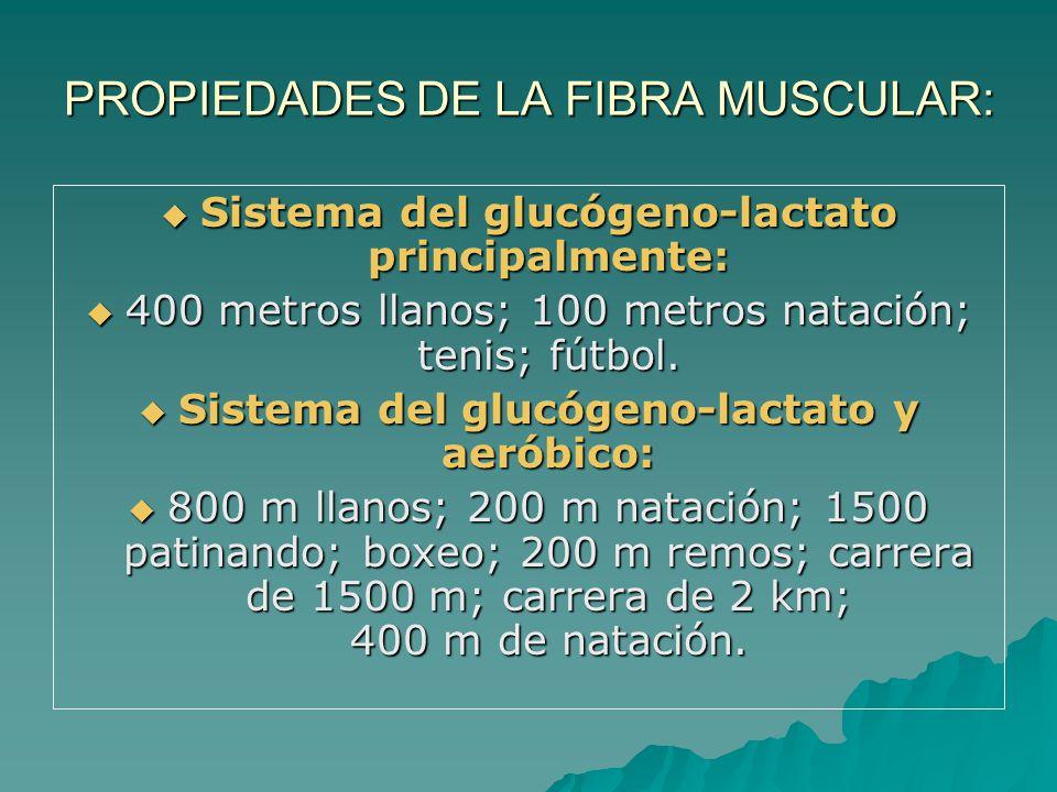 PROPIEDADES DE LA FIBRA MUSCULAR: Sistema del glucógeno-lactato principalmente: Sistema del glucógeno-lactato principalmente: 400 metros llanos; 100 metros natación; tenis; fútbol.
