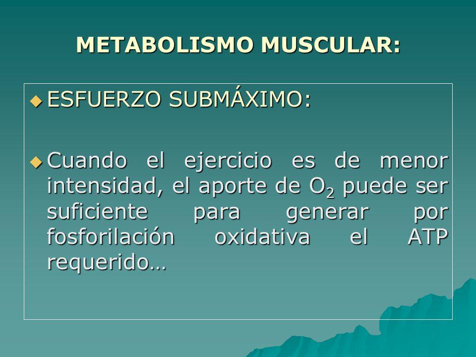 METABOLISMO MUSCULAR: ESFUERZO SUBMÁXIMO: ESFUERZO SUBMÁXIMO: Cuando el ejercicio es de menor intensidad, el aporte de O 2 puede ser suficiente para generar por fosforilación oxidativa el ATP requerido… Cuando el ejercicio es de menor intensidad, el aporte de O 2 puede ser suficiente para generar por fosforilación oxidativa el ATP requerido…