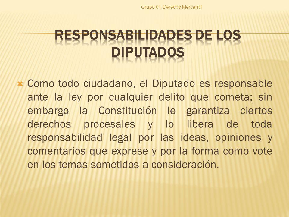Como todo ciudadano, el Diputado es responsable ante la ley por cualquier delito que cometa; sin embargo la Constitución le garantiza ciertos derechos