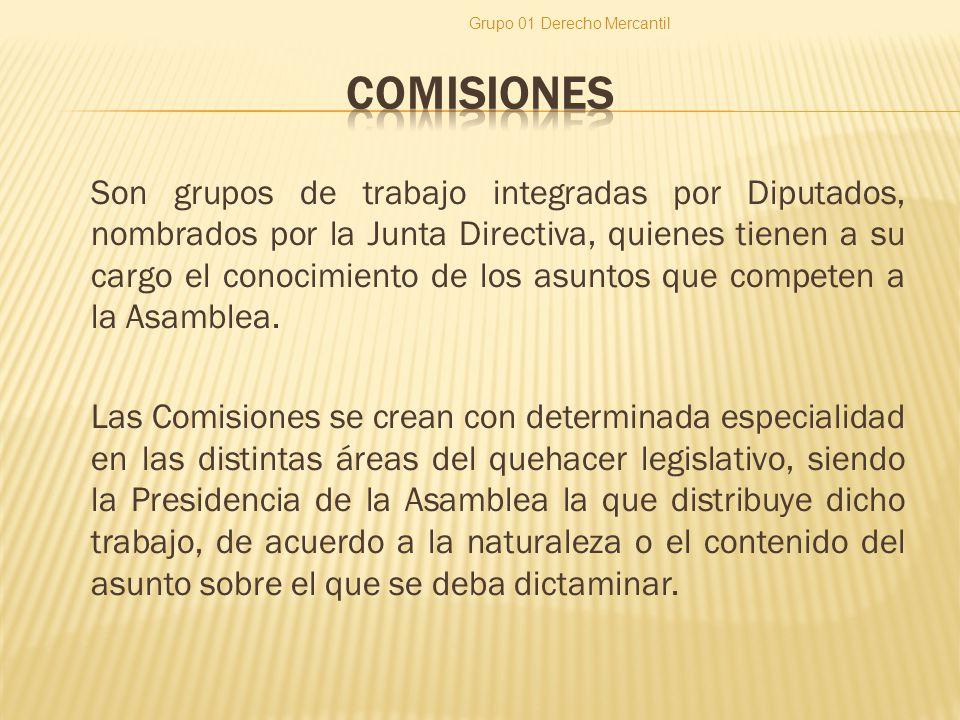 Son grupos de trabajo integradas por Diputados, nombrados por la Junta Directiva, quienes tienen a su cargo el conocimiento de los asuntos que competen a la Asamblea.