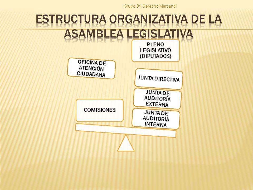 COMISION LEGISLATIVA ESPECIAL Son nombradas por la Asamblea, de conformidad con el número 32 del artículo 131 de la Constitución Grupo 01 Derecho Mercantil