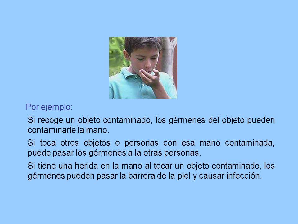 Por ejemplo: Si recoge un objeto contaminado, los gérmenes del objeto pueden contaminarle la mano. Si toca otros objetos o personas con esa mano conta