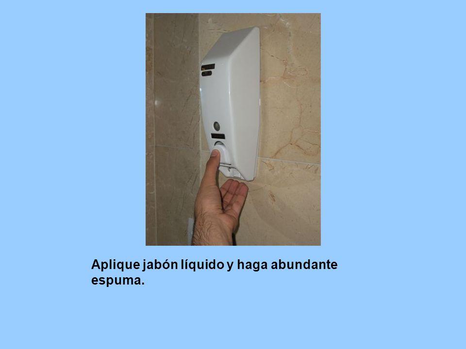 Aplique jabón líquido y haga abundante espuma.