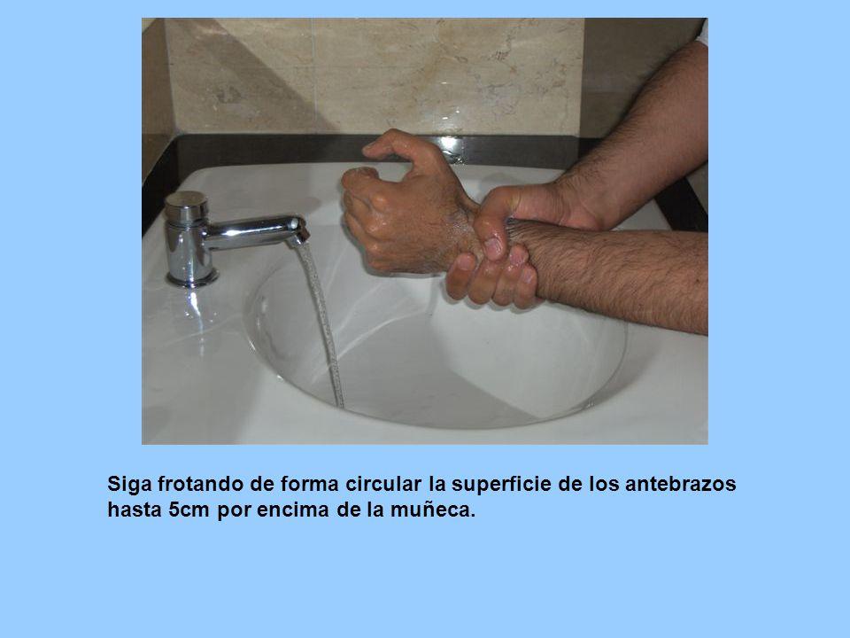 Siga frotando de forma circular la superficie de los antebrazos hasta 5cm por encima de la muñeca.