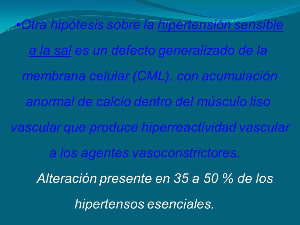Otra hipótesis sobre la hipertensión sensible a la sal es un defecto generalizado de la membrana celular (CML), con acumulación anormal de calcio dent
