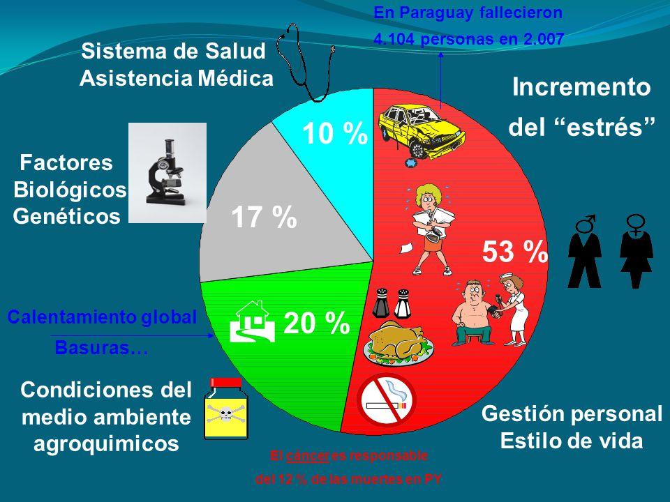 Gestión personal Estilo de vida 53 % 20 % 17 % 10 % Condiciones del medio ambiente agroquimicos Factores Biológicos Genéticos Sistema de Salud Asisten