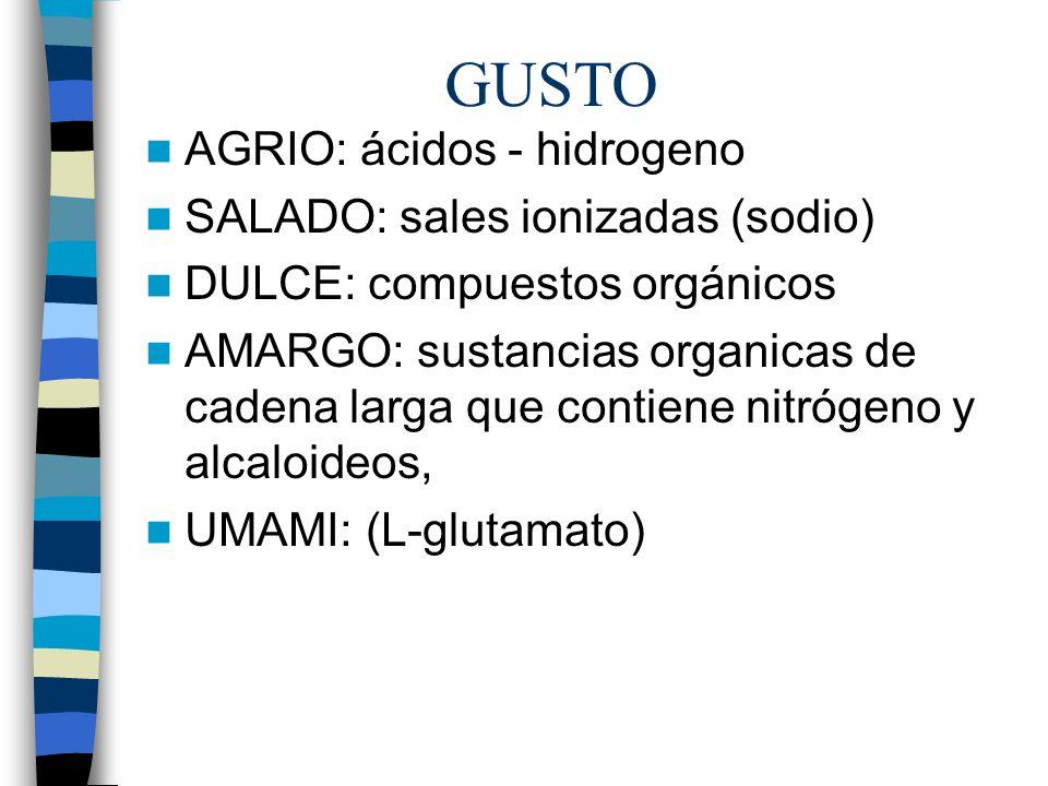 GUSTO AGRIO: ácidos - hidrogeno SALADO: sales ionizadas (sodio) DULCE: compuestos orgánicos AMARGO: sustancias organicas de cadena larga que contiene nitrógeno y alcaloideos, UMAMI: (L-glutamato)
