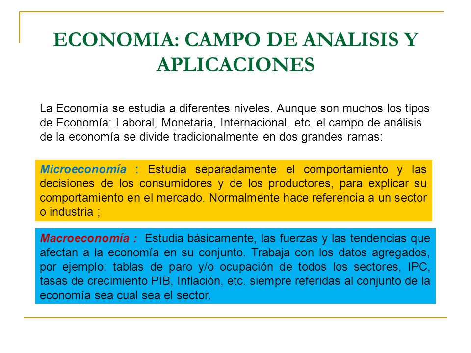 ECONOMIA: CAMPO DE ANALISIS Y APLICACIONES La Economía se estudia a diferentes niveles. Aunque son muchos los tipos de Economía: Laboral, Monetaria, I