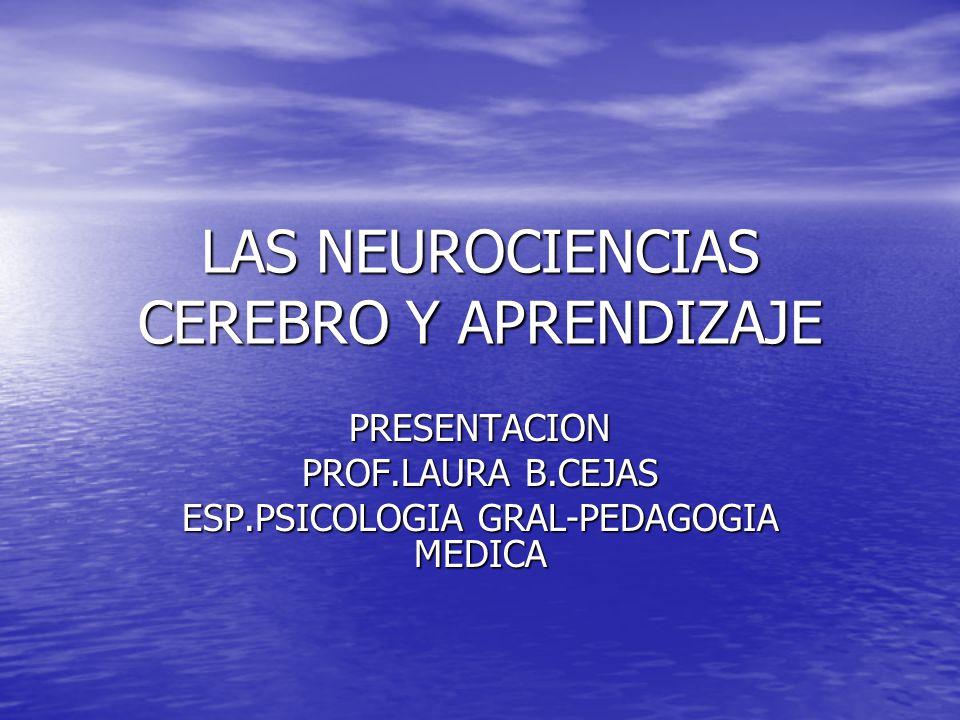 LAS NEUROCIENCIAS CEREBRO Y APRENDIZAJE PRESENTACION PROF.LAURA B.CEJAS ESP.PSICOLOGIA GRAL-PEDAGOGIA MEDICA