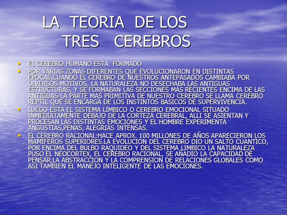 LA TEORIA DE LOS TRES CEREBROS LA TEORIA DE LOS TRES CEREBROS EL CEREBRO HUMANO ESTA FORMADO EL CEREBRO HUMANO ESTA FORMADO POR VARIAS ZONAS DIFERENTE