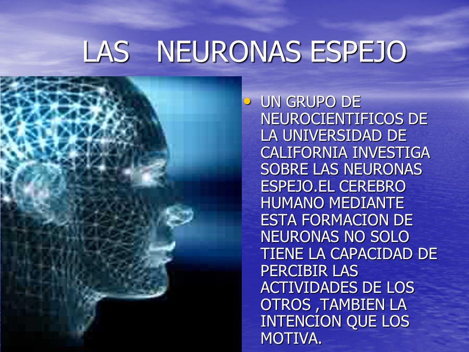 LAS NEURONAS ESPEJO LAS NEURONAS ESPEJO UN GRUPO DE NEUROCIENTIFICOS DE LA UNIVERSIDAD DE CALIFORNIA INVESTIGA SOBRE LAS NEURONAS ESPEJO.EL CEREBRO HU