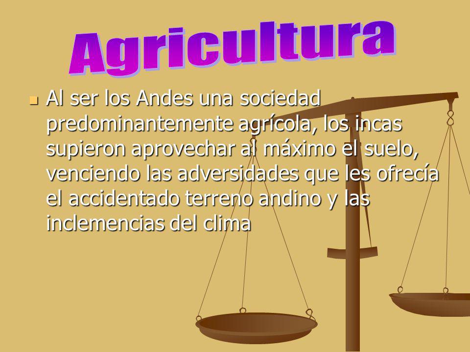 Al ser los Andes una sociedad predominantemente agrícola, los incas supieron aprovechar al máximo el suelo, venciendo las adversidades que les ofrecía